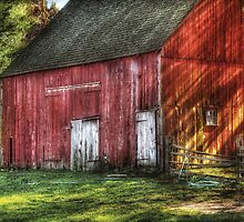 The old red barn by Mike  Savad