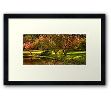 A Quiet Corner - Mount Wilson, Blue Mountains - the HDR Experience Framed Print