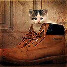 One Puss-N-Boots  by Von McKnelly