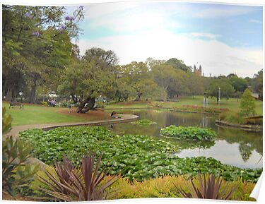 Sydney University Spires In Distance by C J Lewis
