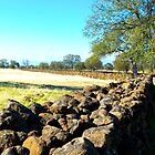 Great Wall of Redding, CA by hanforddennis