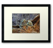 Two curious lizards Framed Print