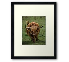 Get out of my Way Framed Print