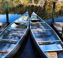 Docked Canoes by Carolyn  Fletcher