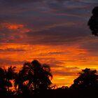 Beautiful Sunset by cjgaus