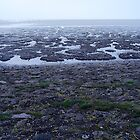 Waddenzee, Holland by pvhonk