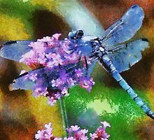 Blue Dragonfly on Wild Garlic by taiche