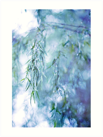 Silver Branches by Susan Tong