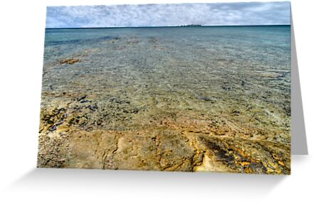 Limestone at Yamacraw Beach in Nassau, The Bahamas by 242Digital