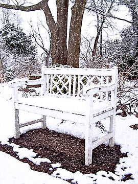 Snowy Bench by debidabble