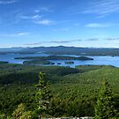 Rattlesnake Island by Cow41087