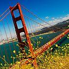 Golden Gate  by JMDasso