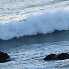 Surfing Off the California Coast - 4:49pm by photoartful