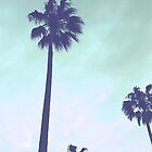 Palms for iPhone by Megan Raphael