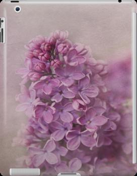 senteur de lilas by lucyliu