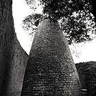 The Conical Tower Great Zimbabwe I by Adrian Park