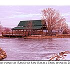 Iced Pond at Rancho San Rafael Park, Winter 2011 by Ellen  Holcomb