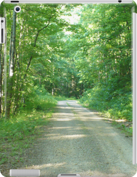 Nature Road by MsSLeboeuf