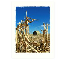 Remains of the Harvest Art Print