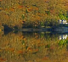 Rydal Water .. Russet Reflections by Jamie  Green