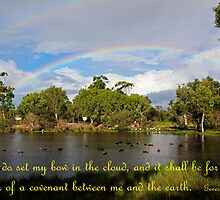 Genesis 9:13 - God's Promise by JLOPhotography