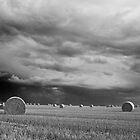 Hay Bales, north Norfolk by Ryan Watts