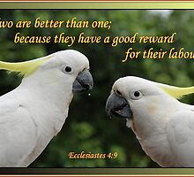 Ecclesiastes 4:9 - Partnership by JLOPhotography