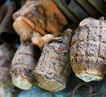 Rusty Old Grenades  by BenClarkImagery