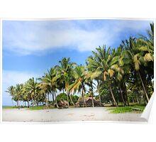 Buna Beach Palm Trees  Poster