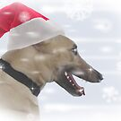 Forget the reindeer - greyhounds are faster! by Christina Brundage