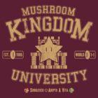 University 1-1 by rasabi