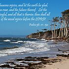 Psalm 96:11 - Rejoice by JLOPhotography