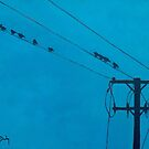 Birds Wires 15  by eolai