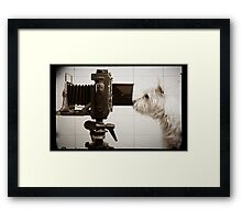 Vintage Pho Dog Grapher with View Camera Framed Print