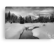 Winter land III Canvas Print