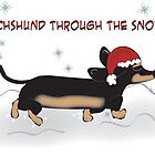 Dachshund through the snow... by Diana-Lee Saville