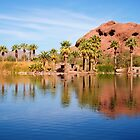 Arizona Reflections by Fern Blacker