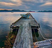Saturna Island Dock by James Wheeler