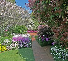 Along the Garden Path, Toowoomba, Qld, Australia by Margaret  Hyde