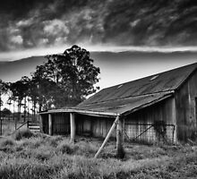 Hay Shed, Cradoc, Tasmania #2 - B&W by Chris Cobern