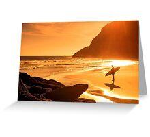 Amazing sunset on beach Greeting Card