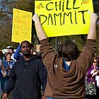 Chill Dammit, Rally to Restore Sanity by Edward Perry