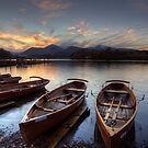 Derwent Water Rowing Boats by MartinWilliams
