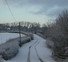Winter Winding Road by Lucy Wilson