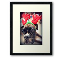 It's That Time Of The Year Again... Bah Humbug... Framed Print