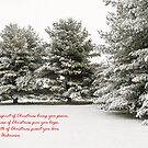 ****  CHRISTMAS CARD  **** by RGHunt