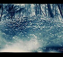 Log Fungus by Richard Ess-Wilkins