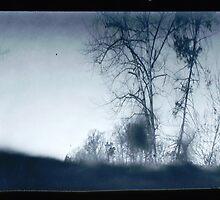 Treescape #4 by Richard Ess-Wilkins