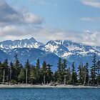 Kenai Fiords National Park - Seward, Alaska by Mary Warner