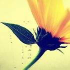 Yellow Flower by Aviana